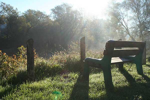 Kevin Land bench image